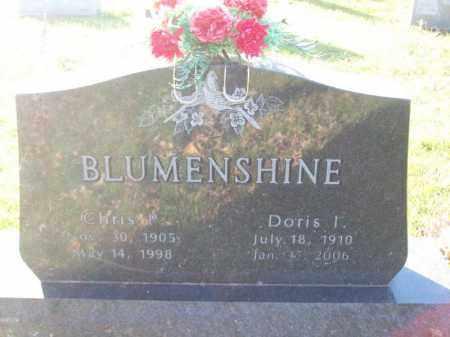 BLUMENSHINE, CHRIS P - Tazewell County, Illinois | CHRIS P BLUMENSHINE - Illinois Gravestone Photos