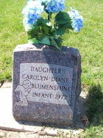 BLUMENSHINE, CAROLYN DIANE - Tazewell County, Illinois   CAROLYN DIANE BLUMENSHINE - Illinois Gravestone Photos