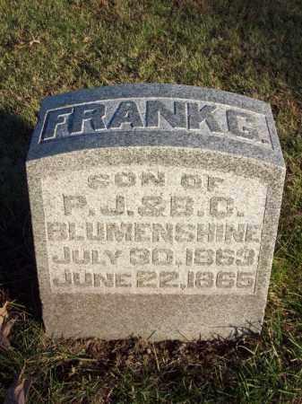BLUMENSHINE, FRANK G - Tazewell County, Illinois | FRANK G BLUMENSHINE - Illinois Gravestone Photos