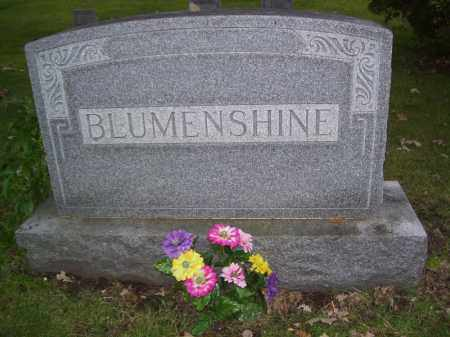 BLUMENSHINE, FAMILY MONUMENT - Tazewell County, Illinois | FAMILY MONUMENT BLUMENSHINE - Illinois Gravestone Photos
