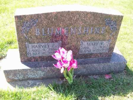 BLUMENSHINE, HARVEY E - Tazewell County, Illinois | HARVEY E BLUMENSHINE - Illinois Gravestone Photos