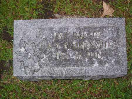 BLUMENSHINE, INFANT - Tazewell County, Illinois | INFANT BLUMENSHINE - Illinois Gravestone Photos