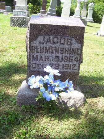 BLUMENSHINE, JACOB - Tazewell County, Illinois | JACOB BLUMENSHINE - Illinois Gravestone Photos