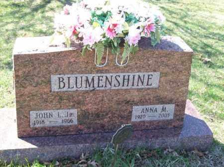 BLUMENSHINE, ANNA M - Tazewell County, Illinois | ANNA M BLUMENSHINE - Illinois Gravestone Photos