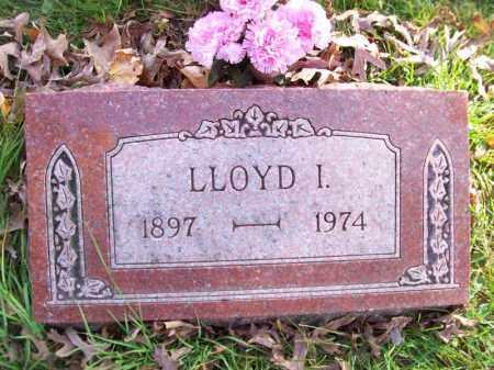 BLUMENSHINE, LLOYD I - Tazewell County, Illinois | LLOYD I BLUMENSHINE - Illinois Gravestone Photos