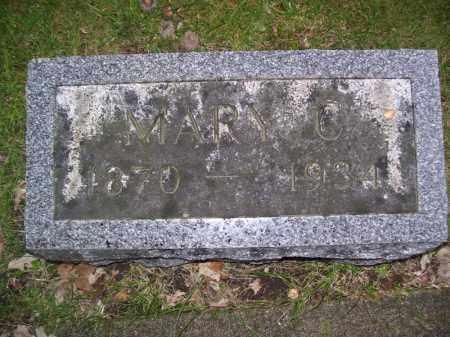 BLUMENSHINE, MARY C - Tazewell County, Illinois | MARY C BLUMENSHINE - Illinois Gravestone Photos
