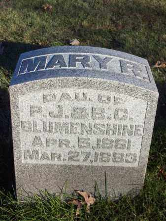 BLUMENSHINE, MARY R - Tazewell County, Illinois | MARY R BLUMENSHINE - Illinois Gravestone Photos