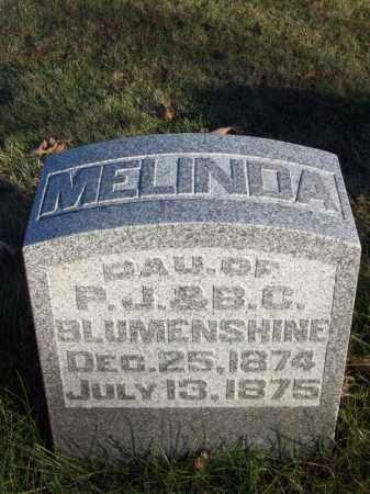 BLUMENSHINE, MELINDA - Tazewell County, Illinois | MELINDA BLUMENSHINE - Illinois Gravestone Photos