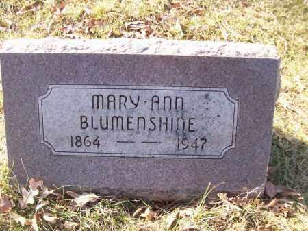 BLUMENSHINE, MARY ANN - Tazewell County, Illinois | MARY ANN BLUMENSHINE - Illinois Gravestone Photos