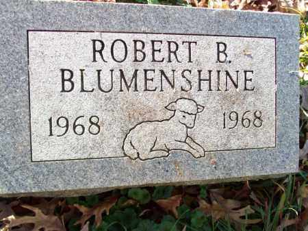 BLUMENSHINE, ROBERT B - Tazewell County, Illinois | ROBERT B BLUMENSHINE - Illinois Gravestone Photos