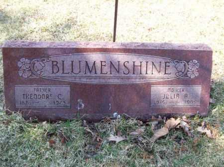 BLUMENSHINE, THEODORE C - Tazewell County, Illinois | THEODORE C BLUMENSHINE - Illinois Gravestone Photos