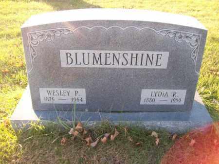 BLUMENSHINE, WESLEY P - Tazewell County, Illinois | WESLEY P BLUMENSHINE - Illinois Gravestone Photos