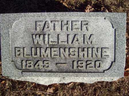 BLUMENSHINE, WILLIAM - Tazewell County, Illinois | WILLIAM BLUMENSHINE - Illinois Gravestone Photos