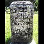 BROWN, SARAH - Tazewell County, Illinois | SARAH BROWN - Illinois Gravestone Photos