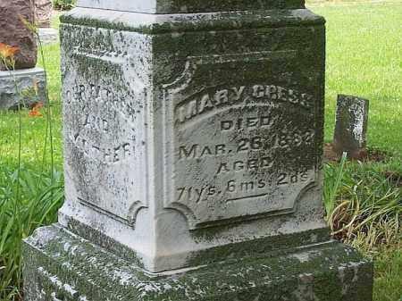 CRESS, MARY - Tazewell County, Illinois | MARY CRESS - Illinois Gravestone Photos