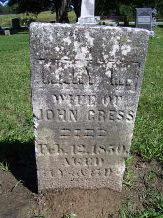 CRESS, MARY M - Tazewell County, Illinois   MARY M CRESS - Illinois Gravestone Photos