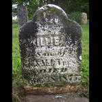 CRESS, WILLIE - Tazewell County, Illinois | WILLIE CRESS - Illinois Gravestone Photos