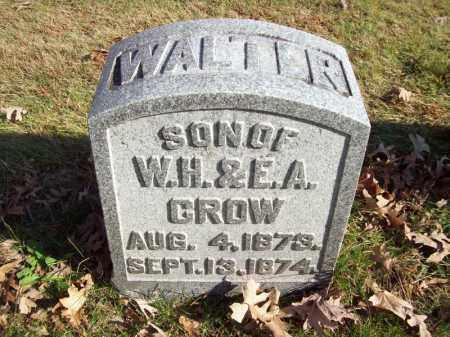 CROW, WALTER - Tazewell County, Illinois   WALTER CROW - Illinois Gravestone Photos