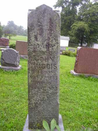 DUBOIS, MARY - Tazewell County, Illinois   MARY DUBOIS - Illinois Gravestone Photos