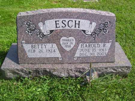 ESCH, HAROLD R - Tazewell County, Illinois | HAROLD R ESCH - Illinois Gravestone Photos