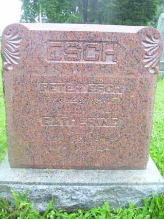 ESCH, CATHERINE - Tazewell County, Illinois | CATHERINE ESCH - Illinois Gravestone Photos