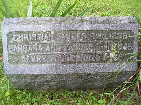 FAUBER, BARBARA ANN - Tazewell County, Illinois | BARBARA ANN FAUBER - Illinois Gravestone Photos