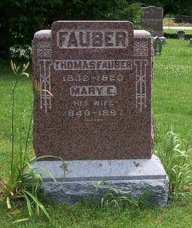 FAUBER, MARY E - Tazewell County, Illinois | MARY E FAUBER - Illinois Gravestone Photos