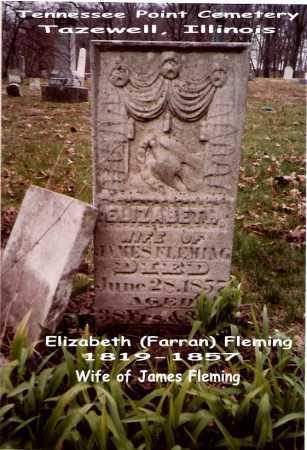 FLEMING, ELIZABETH - Tazewell County, Illinois | ELIZABETH FLEMING - Illinois Gravestone Photos
