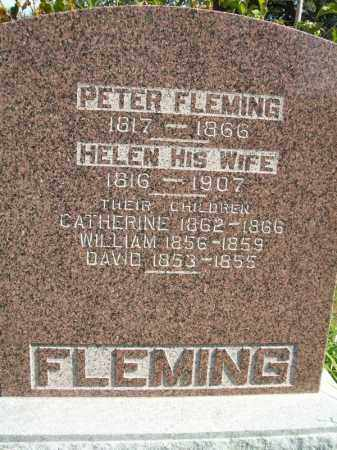 FLEMING, HELEN - Tazewell County, Illinois | HELEN FLEMING - Illinois Gravestone Photos