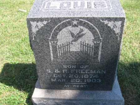 FREEMAN, LOUIS - Tazewell County, Illinois | LOUIS FREEMAN - Illinois Gravestone Photos