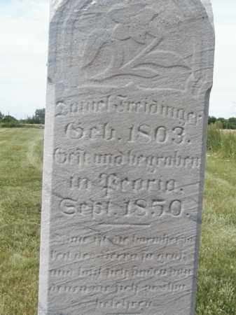 FREIDINGER, DANIEL - Tazewell County, Illinois   DANIEL FREIDINGER - Illinois Gravestone Photos