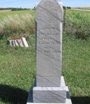 FREIDINGER, JOHANNES N - Tazewell County, Illinois | JOHANNES N FREIDINGER - Illinois Gravestone Photos