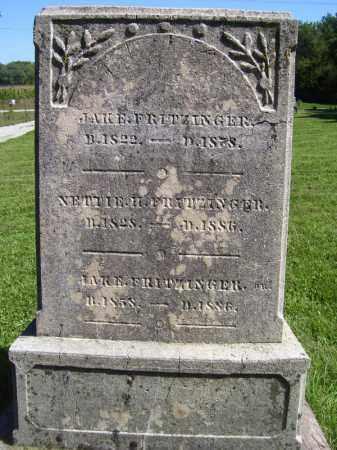 FRITZINGER, JAKE - Tazewell County, Illinois | JAKE FRITZINGER - Illinois Gravestone Photos