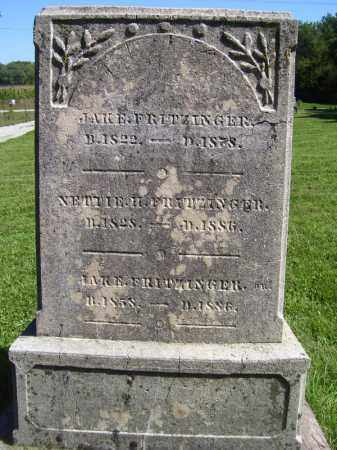 FRITZINGER, JAKE, JR. - Tazewell County, Illinois   JAKE, JR. FRITZINGER - Illinois Gravestone Photos