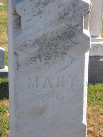 FULLER, MARY - Tazewell County, Illinois | MARY FULLER - Illinois Gravestone Photos