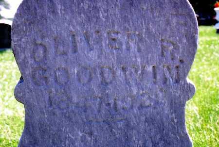 GOODWIN, OLIVER REINHART - Tazewell County, Illinois | OLIVER REINHART GOODWIN - Illinois Gravestone Photos
