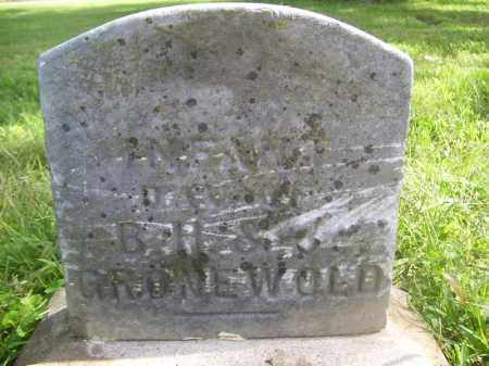 GRONEWOLD, INFANT - Tazewell County, Illinois | INFANT GRONEWOLD - Illinois Gravestone Photos