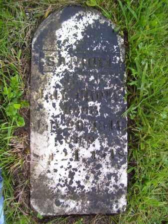 GROVE, SAMUEL - Tazewell County, Illinois   SAMUEL GROVE - Illinois Gravestone Photos