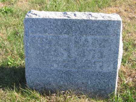 HARDY, EDGAR - Tazewell County, Illinois | EDGAR HARDY - Illinois Gravestone Photos