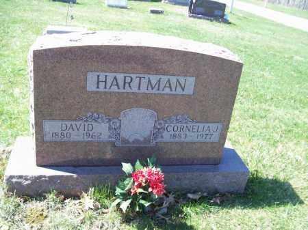 HARTMAN, DAVID - Tazewell County, Illinois | DAVID HARTMAN - Illinois Gravestone Photos