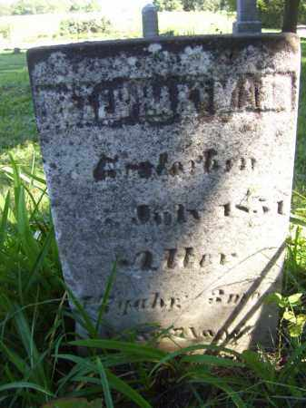 HARTMAN, PETER - Tazewell County, Illinois | PETER HARTMAN - Illinois Gravestone Photos