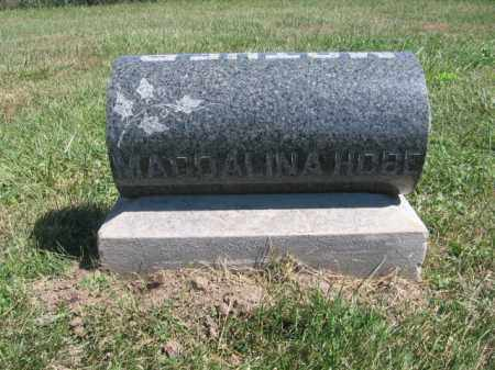 HOBE8, MAGDALINA - Tazewell County, Illinois | MAGDALINA HOBE8 - Illinois Gravestone Photos