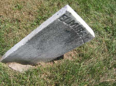 HODGSON, ELMIRA L - Tazewell County, Illinois | ELMIRA L HODGSON - Illinois Gravestone Photos