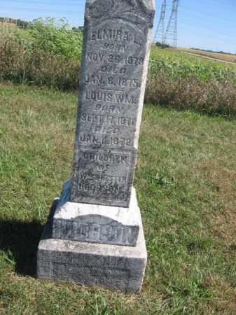 HODGSON, ELMIRA L - Tazewell County, Illinois   ELMIRA L HODGSON - Illinois Gravestone Photos