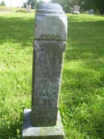 IKENA, ALBRECHT - Tazewell County, Illinois   ALBRECHT IKENA - Illinois Gravestone Photos