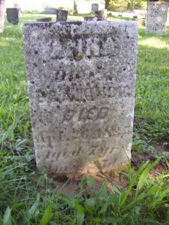 KINDIG, ANNA - Tazewell County, Illinois   ANNA KINDIG - Illinois Gravestone Photos