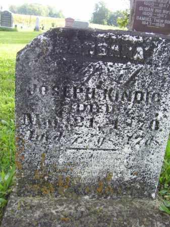 KINDIG, BARBARA - Tazewell County, Illinois | BARBARA KINDIG - Illinois Gravestone Photos
