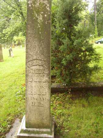 KINDIG, ELIZABETH - Tazewell County, Illinois | ELIZABETH KINDIG - Illinois Gravestone Photos