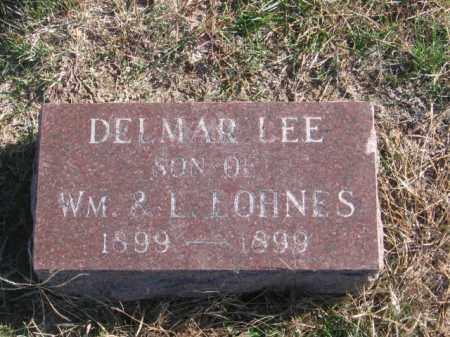 LOHNES, DELMAR LEE - Tazewell County, Illinois | DELMAR LEE LOHNES - Illinois Gravestone Photos
