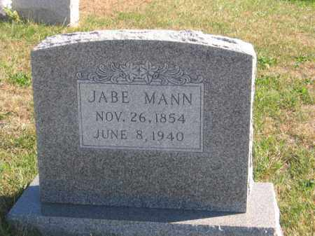 MANN, JABE - Tazewell County, Illinois   JABE MANN - Illinois Gravestone Photos